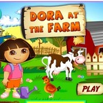 Dora Farm Harvest Season