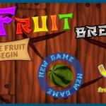 Fruit Break